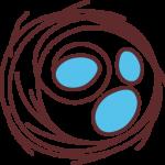 HealthyNest-Logo-NestONLY-WEB copy