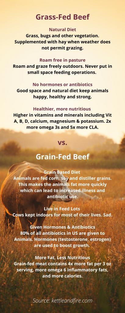 Grass vs Grain Fed Beef