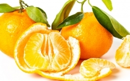 Strengthen Your Immunity: Spotlight on Vitamin C