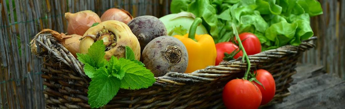 Healthy Vegan vs. Crappy Vegan